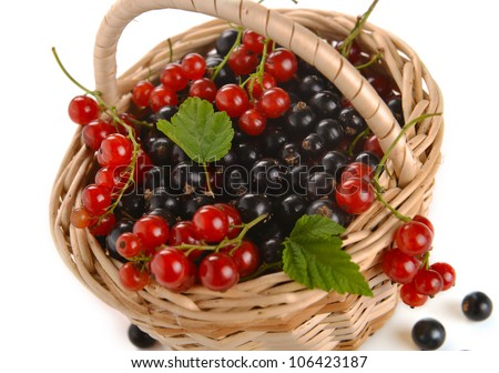 basket of berries on a white backgroun