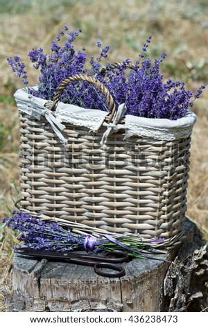 Basket with a lavender and vintage scissors