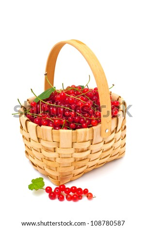 basket with red currant over white