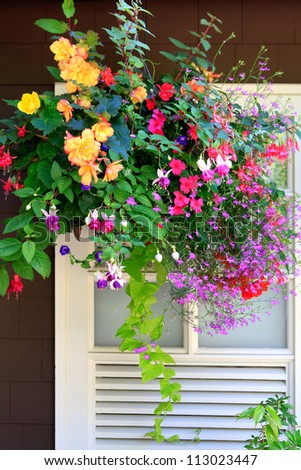 baskets with flowers outside of house windows.