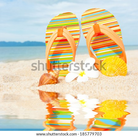 Beach sandals on the sandy coast with reflection