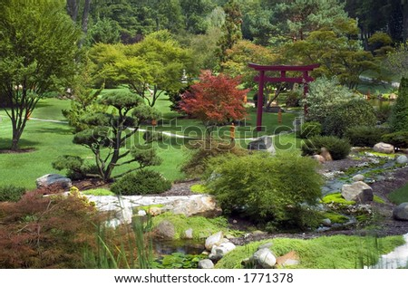 Flamingo tropical park stock photo 6263107 shutterstock for Small japanese water garden