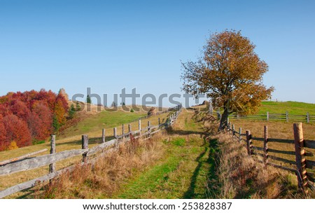 Beautiful autumn landscape in the mountains, Carpathian, Ukraine