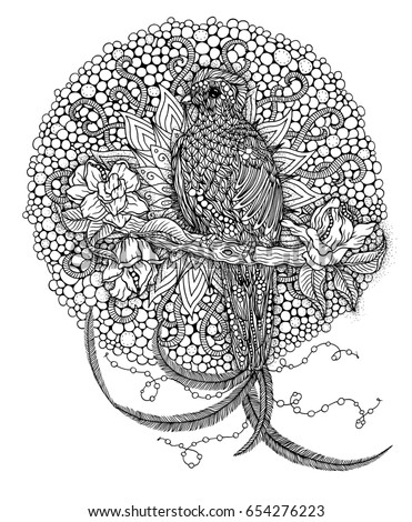 quetzal bird coloring page - ornated elephant family vector illustration zentangle