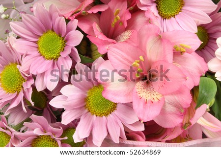 Beautiful bunch of pink flowers. Colorful floral background.