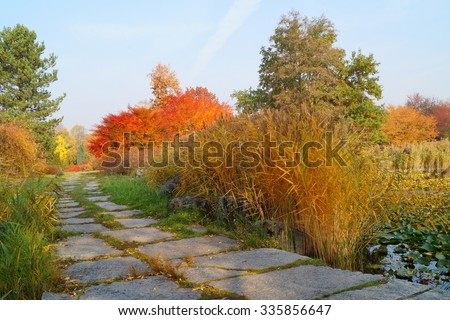 Beautiful, colorful autumn - autumn alley