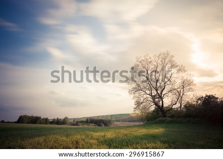 Beautiful countryside landscape at sunset