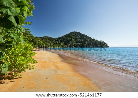 Beautiful dream paradise beach in Masoala national park, Madagascar. Blue sky and clear sea, Wilderness virgin nature scene