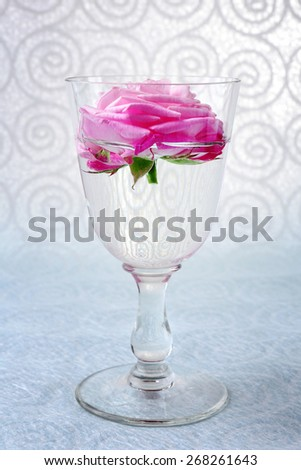 Beautiful fresh rose in glass on color wallpaper background