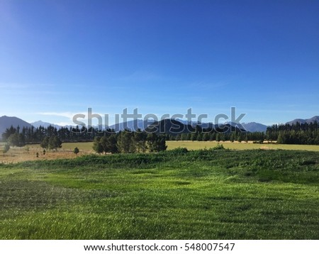 Beautiful green landscape with hills, soft green grass and cloudless blue sky in New Zealand, Wanaka area