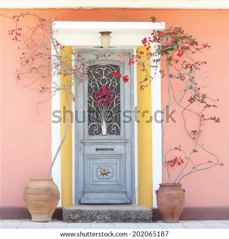 Beautiful homely house decorative door with blooming red roses