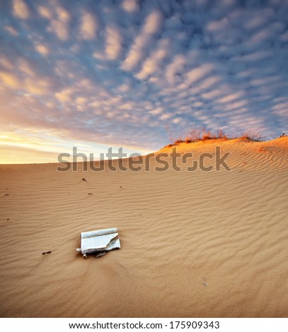 Beautiful landscape in desert.  Composition of nature.