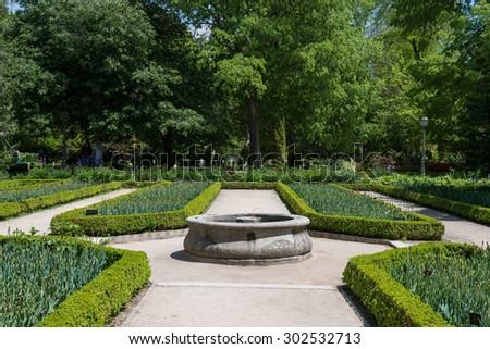 Large Green Back Yard Pine Trees Stock Photo 93769735 Shutterstock
