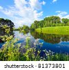beautiful rural lake and green grassy forest on the knoll - stock photo