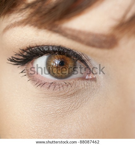 Beautiful shape of female eye with black-brown cosmetic make-up