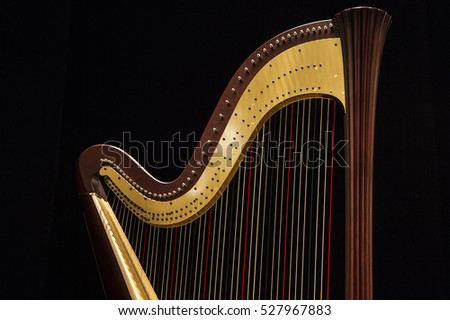 Beautiful shape of harp, close up on the dark, black background