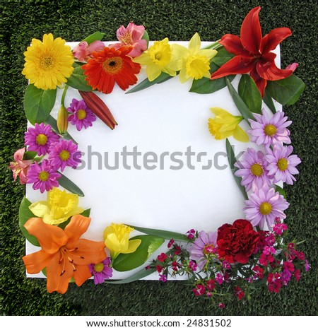 Beautiful Spring Flower Frame on a grass background