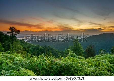 Beautiful summer sunrise in mountains with Rays of Light. Soft Focus, Vibrant Colors