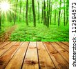 Beautiful sunlight in the autumn forest and wood planks floor - stock photo