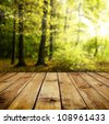 Beautiful sunlight in the autumn forest with wood planks floor - stock photo