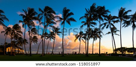 waikiki black single women Where are the happening singles spots around honolulu and i'm a single in waikiki is going to have tourist women who will be there for.