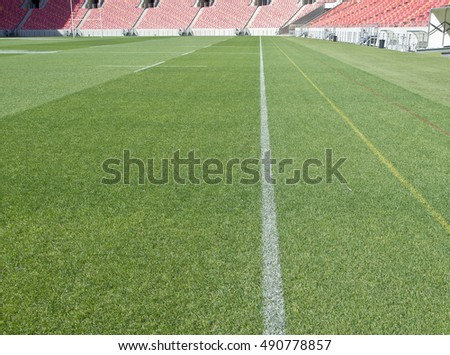 beautiful textured grass of a sports stadium with white field markings