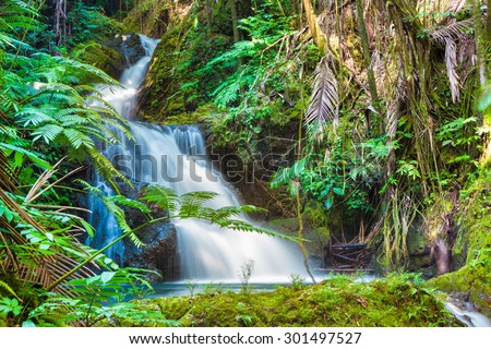 Beautiful waterfall in tropical rainforest in Hawaii