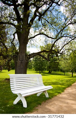 Beautiful white bench in public park