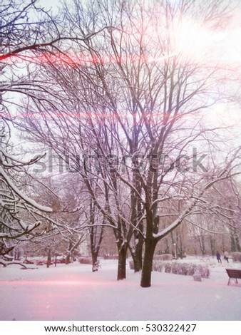 Beautiful winter Wonderland , with snow and shining light
