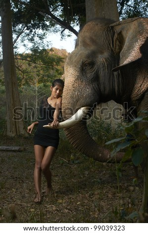 Beautiful young Asian model wearing black dress posing with giant friendly elephant in dense Thailand jungle park.