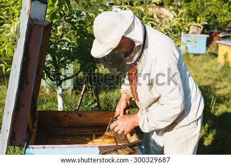 Beekeeper wearing in a protective hat with equipment does inspection of his beehive, waist up