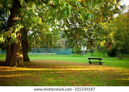 Bench Under Tree Royal Botanic Gardens Stock Photo