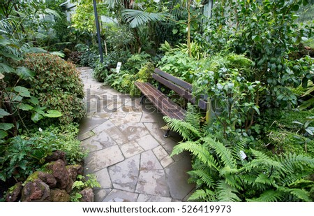 Bench surrounded with tropical plants in botanical garden