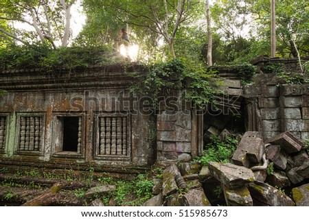 Beng Mealea temple jungle in Cambodia