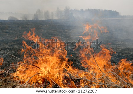 Big fire in the dry grass field. Russia, Ural.
