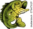 big mouth bass color drawing - stock photo
