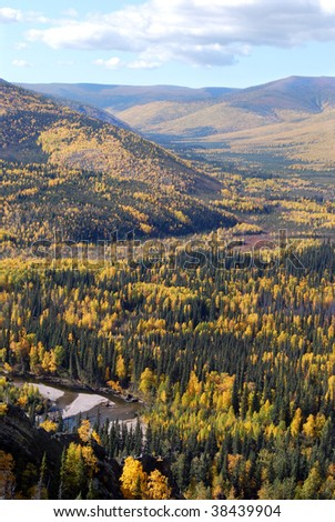Birch and Spruce Filled Mountain Valley in Fall