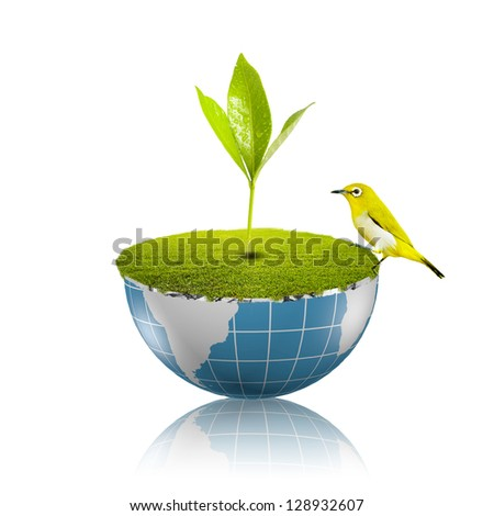 Bird on globe with grass growing