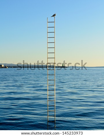 Bird on the top of the ladders which are stuck in the sea with blue sky and navy blue sea in the background.