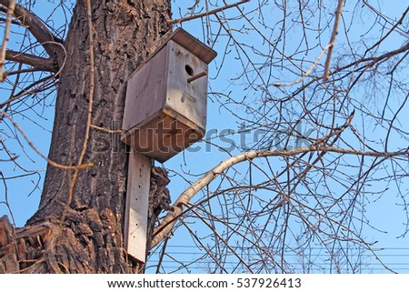 Birdhouse in a tree in the spring