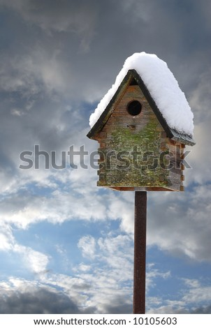 Birdhouse with snow on roof