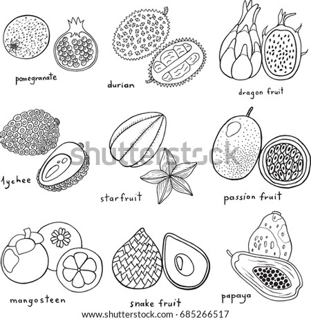Black And White Hand Drawn Set With Tropical Exotic Fruits Raster Art Monochrome Coloring Page