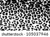 Black and white leopard print - stock photo