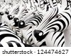Black and White on Group of Pottery Zebra - stock photo