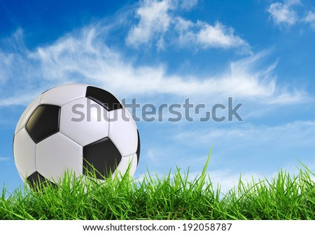 black and white soccer ball  on grass field with blue sky