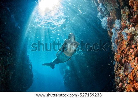 black hair Mermaid swimming underwater in the deep blue sea and looking at you