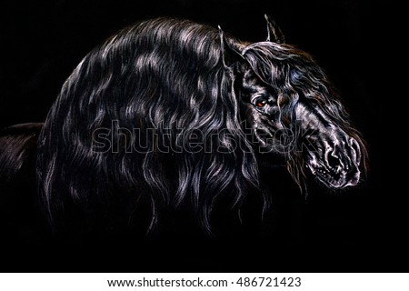 Closeup Portrait Black Scottish Terrier Stock Photo ...