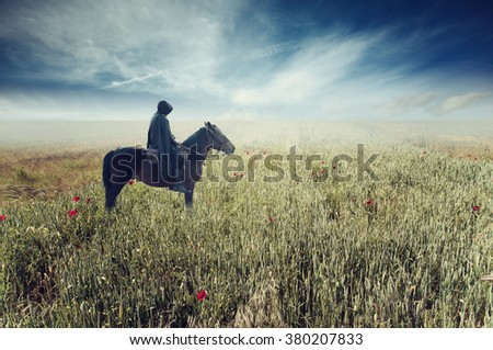 black knight riding a horse in a field of poppies