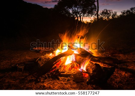 Blazing bonfire on the evening time at Thai forest.