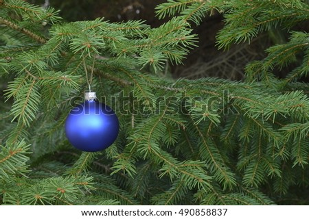 Blue Christmas bauble on spruce branch